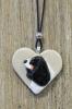 Cavalier king charlesinspanieli -koiruuksia sydänkaulakoru