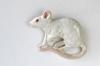 Rotta rintaneula tai magneetti