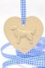 Novascotiannoutaja - koira sydänkoriste
